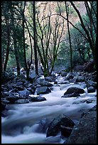 Creek at the base of Bridalveil Falls. Yosemite National Park ( color)