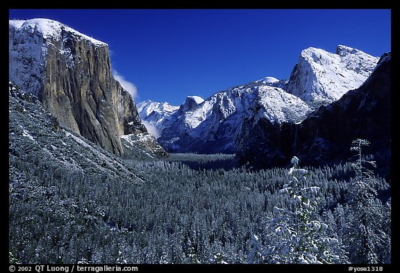 Yosemite Valley from Tunnel View in winter with snow-covered trees and mountains. Yosemite National Park, California, USA.