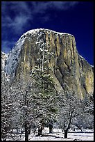 West face of El Capitan in winter. Yosemite National Park, California, USA. (color)