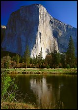 El Capitan and Merced River reflection. Yosemite National Park, California, USA. (color)