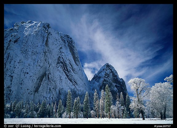 El Capitan Meadow and Cathedral Rocks with fresh snow. Yosemite National Park, California, USA.
