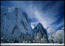 El Capitan Meadow and Cathedral Rocks with fresh snow. Yosemite National Park, California, USA. (color)