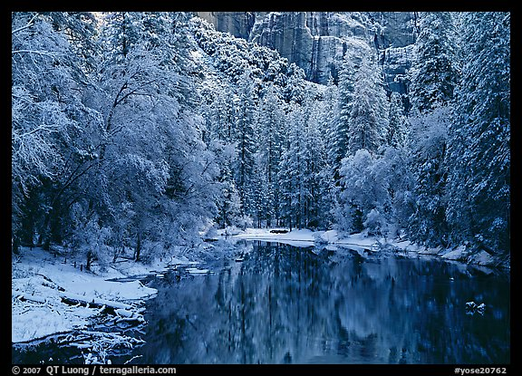 Snowy trees and rock wall reflected in Merced River. Yosemite National Park (color)