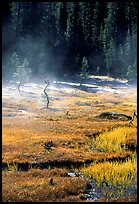 Mist raises from Tuolumne Meadows on a autumn morning. Yosemite National Park, California, USA.