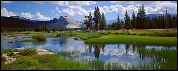 Lambert Dome reflected in seasonal Tuolume Meadows pond. Yosemite National Park (Panoramic color)