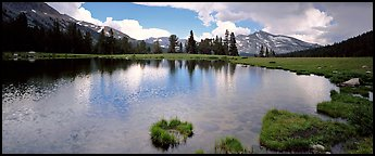Alpine tarn near Tioga Pass. Yosemite National Park (Panoramic color)