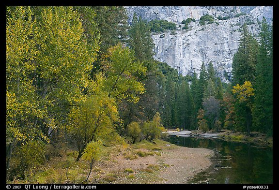 Merced River at the base of El Capitan in autumn. Yosemite National Park (color)