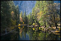 Merced River, trees, and rock wall. Yosemite National Park, California, USA.