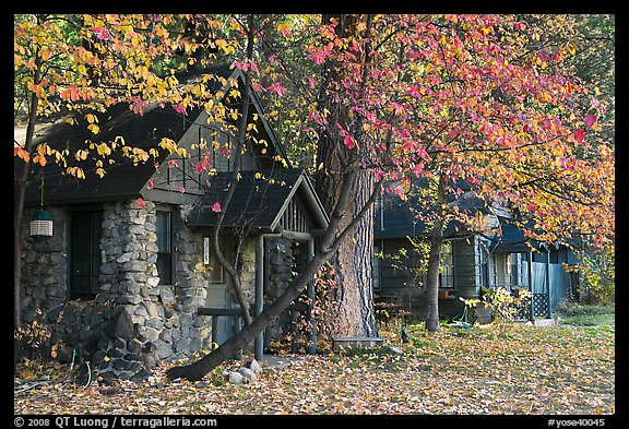 Private houses in autumn. Yosemite National Park (color)