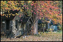 Private houses in autumn. Yosemite National Park ( color)
