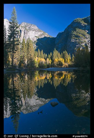 Autumn morning reflections, Merced River. Yosemite National Park (color)