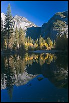 Autumn morning reflections, Merced River. Yosemite National Park, California, USA.