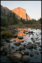 Boulders in Merced River and El Capitan at sunset. Yosemite National Park, California, USA.