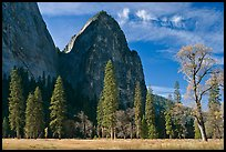 El Capitan Meadow and Cathedral Rocks in autumn. Yosemite National Park ( color)