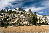 Meadow and Mount Hoffman. Yosemite National Park, California, USA. (color)