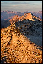 Sunset light over moutain near Mt Hoffman. Yosemite National Park, California, USA. (color)