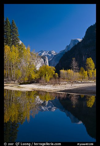 Trees in autum foliage, Half-Dome, and cliff reflected in Merced River. Yosemite National Park, California, USA.