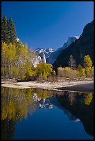 Trees in autum foliage, Half-Dome, and cliff reflected in Merced River. Yosemite National Park, California, USA. (color)