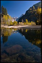 Rocks and Merced River reflections of trees and Half-DOme. Yosemite National Park, California, USA. (color)