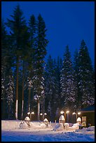 Well-lit gas station and snowy trees. Yosemite National Park, California, USA. (color)