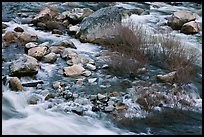Rapids and shrubs, early spring, Lower Merced Canyon. Yosemite National Park ( color)