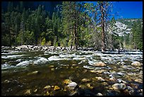 Wide stretch of Merced River in spring, Lower Merced Canyon. Yosemite National Park, California, USA.