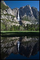 Yosemite Falls and meadow reflected in run-off pond, morning. Yosemite National Park ( color)