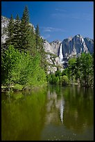 Yosemite Falls and Merced River. Yosemite National Park, California, USA.
