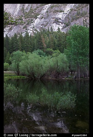 Refections and green trees, Mirror Lake. Yosemite National Park (color)
