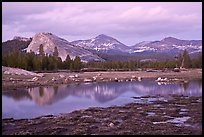 Lambert Dome and Sierra Crest peaks reflected in seasonal pond, dusk. Yosemite National Park, California, USA.