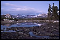 Tuolumne Meadows with domes reflected in early spring, dusk. Yosemite National Park, California, USA.
