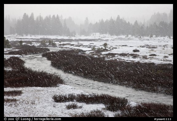 Falling snow streaks, river and meadow. Yosemite National Park (color)