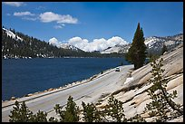 Road on shore of Tenaya Lake. Yosemite National Park ( color)
