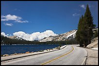 Highway hugging shore of Tenaya Lake. Yosemite National Park, California, USA. (color)