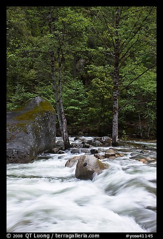 Merced River cascades, boulder, and trees, Happy Isles. Yosemite National Park (color)