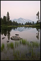 Mammoth Peak reflected in tarn at sunset. Yosemite National Park, California, USA.