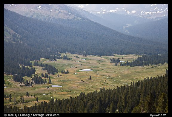 Dana Meadows seen from above, early summer. Yosemite National Park (color)