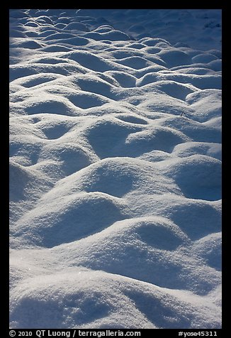 Snow mounds, Cook Meadow. Yosemite National Park (color)