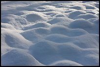 Snow pattern, Cook Meadow. Yosemite National Park ( color)