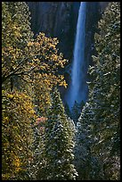 Bridalveil Fall after rare spring snow storm. Yosemite National Park ( color)