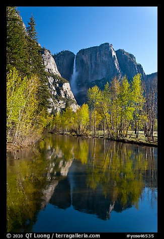 Yosemite Falls reflected in mirror-like Merced River, early spring. Yosemite National Park (color)