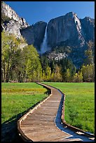 Boardwalk and Yosemite Falls. Yosemite National Park, California, USA. (color)