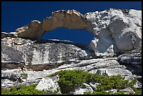 Rare granite arch, Indian Rock. Yosemite National Park, California, USA. (color)