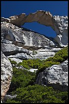 Granite natural arch, Indian Rock. Yosemite National Park, California, USA. (color)