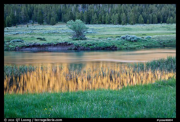 Hills reflected in stream, Lyell Canyon. Yosemite National Park (color)
