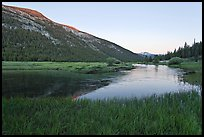 Lyell Canyon and Lyell Fork of the Tuolumne River, sunset. Yosemite National Park ( color)