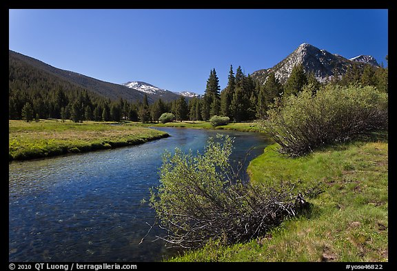 Tuolumne River in Lyell Canyon, morning. Yosemite National Park (color)