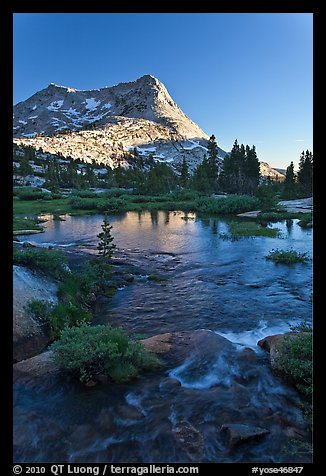Vogelsang Peak reflected in stream pond. Yosemite National Park (color)