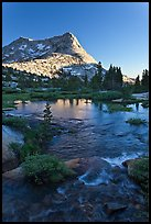 Vogelsang Peak reflected in stream pond. Yosemite National Park ( color)