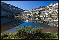 Bush and alpine lake, Vogelsang. Yosemite National Park ( color)